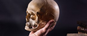 hamlet yorick's skull